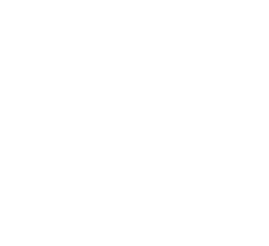 houlton_logo